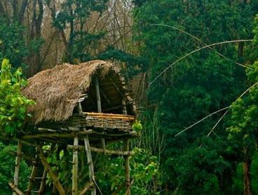 Kodaikanal - Munnar - Ooty